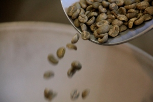 green-coffee-beans-falling-frm-scoop-into-container