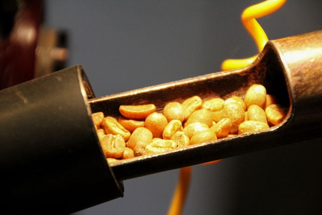 bean-probe-showing-partially-roasted-coffee-beans
