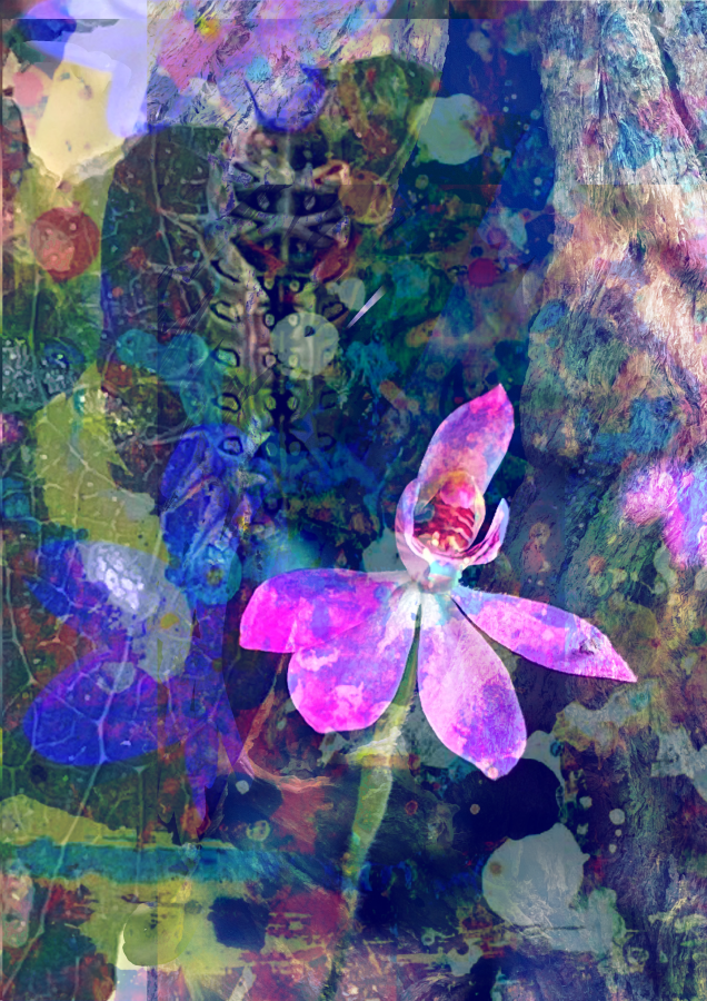 'Pink-Fingers with Caterpillar', Digital collage